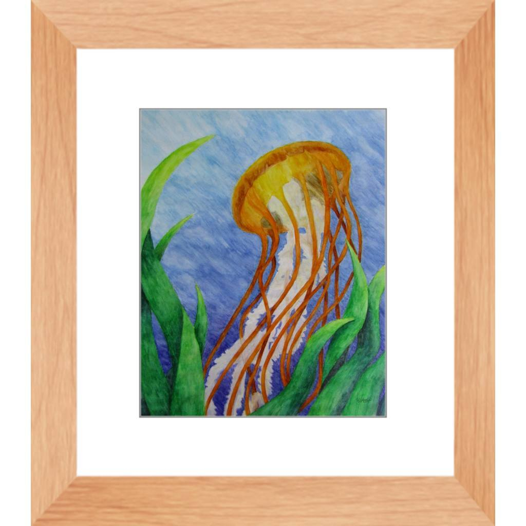 Pacific Sea Nettle Jellyfish Framed Print Of Watercolor Pencil Aquatic Fine Art The Unfolding Butterfly