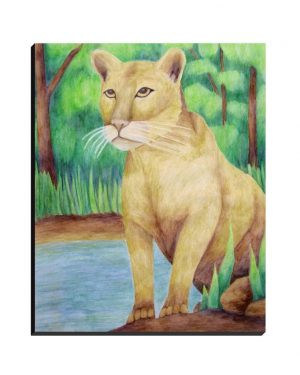 Wrapped Canvas - Cougar - Wrapped Canvas Of Watercolor Pencil Feline Land Mammal Fine Art