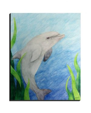Wrapped Canvas - Dolphin - Wrapped Canvas Of Watercolor Pencil Aquatic Fine Art