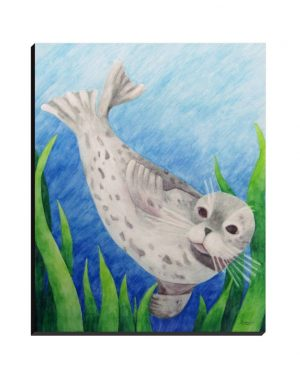 Wrapped Canvas - Harbor Seal - Wrapped Canvas Of Watercolor Pencil Aquatic Fine Art