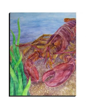 Wrapped Canvas - Lobster - Wrapped Canvas Of Watercolor Pencil Aquatic Fine Art