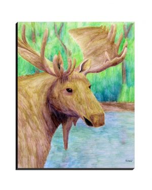 Wrapped Canvas - Moose - Wrapped Canvas Of Watercolor Pencil Land Mammal Fine Art