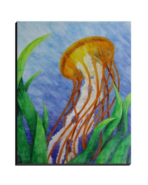 Wrapped Canvas - Pacific Sea Nettle Jellyfish - Wrapped Canvas Of Watercolor Pencil Aquatic Fine Art